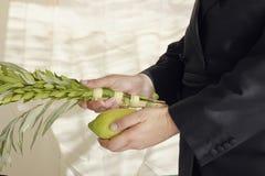 Orthodoxer hasidic Jude, der das Gebot des Nehmens von durchführt Stockbilder