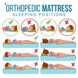 Orthopedic Mattress Vector. Curvature Of Human Spine. Sleeping Position. Spine Support. Health Body. Pillow. Comfortable. Bed. Various Mattresses. Correct Spine royalty free illustration