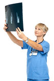 Orthopedic surgeon holding up x-ray to analyze Royalty Free Stock Image