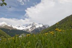 Ortles Group, Dolomites mountain Stock Photos