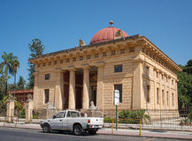 Orto botanico di Palermo. Sicily. Stock Images