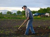 Orto di zappatura dell'agricoltore Fotografie Stock