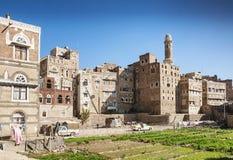 Orto urbano nella città Yemen di sanaa Fotografia Stock