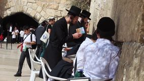 Ortodoksa żyd modlenie z pasją przy Zachodnią ścianą w Jerozolimskim Izrael zbiory