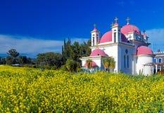 Ortodox kyrka och senapsgult fält nära det Galilee havet Royaltyfria Foton