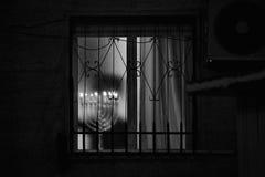Ortodoxa jewbelysningstearinljus av hanukia under den judiska ferien av chanukaen Royaltyfri Fotografi