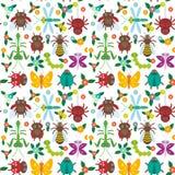 Oruga divertida de la mariposa de la araña de los insectos Foto de archivo libre de regalías
