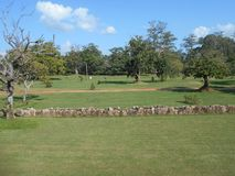 Oruwa lindo do beheth de Anuradhapura Eth Pokuna da natureza da beleza Foto de Stock Royalty Free