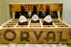 Orval, Bélgica - 8 de mayo de 2015: Cerveza del trapense de Orval Imagen de archivo
