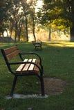 Orvalho da manhã em uma manhã ensolarada do outono Imagens de Stock Royalty Free