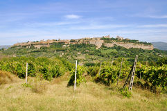 Orvieto Royalty Free Stock Photography