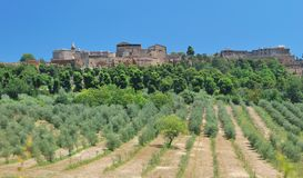 Orvieto,Umbria,Italy Royalty Free Stock Photos