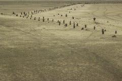 Oryginał pustyni krajobraz zdjęcia royalty free