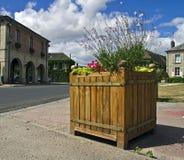 Oryginalny flowerbed. Obraz Royalty Free