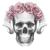 Oryginalny rysunek czaszka z różami i rogami royalty ilustracja