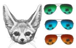 Oryginalny rysunek fenek Fox z lustrzanymi okularami przeciwsłonecznymi ilustracji