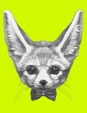 Oryginalny rysunek fenek Fox z szkłami i łęku krawatem royalty ilustracja
