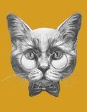 Oryginalny rysunek kot z szkłami i łęku krawatem ilustracja wektor