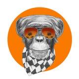 Oryginalny rysunek małpa z szalika i lustra okularami przeciwsłonecznymi royalty ilustracja