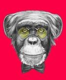 Oryginalny rysunek małpa z szkłami i łęku krawatem ilustracji