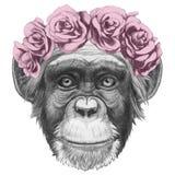 Oryginalny rysunek małpa z kwiecistym kierowniczym wiankiem royalty ilustracja
