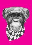 Oryginalny rysunek małpa z szalikiem royalty ilustracja