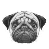 Oryginalny rysunek mopsa pies ilustracji