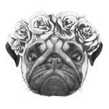 Oryginalny rysunek mopsa pies z kwiecistym kierowniczym wiankiem ilustracji