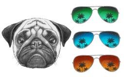 Oryginalny rysunek mopsa pies z lustrzanymi okularami przeciwsłonecznymi royalty ilustracja
