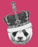 Oryginalny rysunek panda z koroną royalty ilustracja