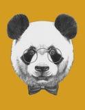 Oryginalny rysunek panda z szkłami i łęku krawatem ilustracja wektor
