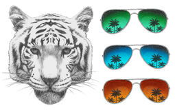 Oryginalny rysunek tygrys z lustrzanymi okularami przeciwsłonecznymi ilustracji