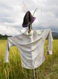 Oryginalny strach na wróble w irlandczyka polu zdjęcie royalty free