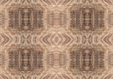 Oryginalny tło abstrakcjonistycznego tła naturalny tekstury drewno Zdjęcie Royalty Free