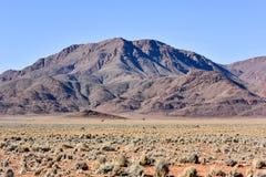 Oryx and Desert Landscape - NamibRand, Namibia Royalty Free Stock Photos
