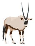 Oryxantilop från sidan som ser in mot, illustration Arkivbild