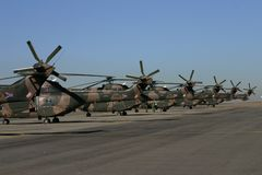 Oryxantilophelikoptersvanar Fotografering för Bildbyråer