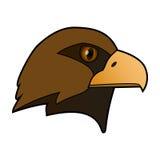 orzeł Głowa ptak zdobycz Obrazy Royalty Free
