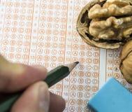 Orzechów włoskich karmowi egzaminy otwierają mądrość, orzechy włoscy ulepszają mózg i postęp inteligencja, ucznie regularnie je o obraz stock