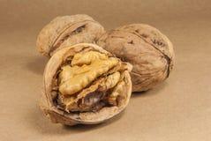 Orzechów włoskich nasiona i cali orzechy włoscy na Kraft papierze Zdjęcie Stock