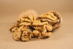 Orzechów włoskich nasiona i cali orzechy włoscy na Kraft papierze Obrazy Stock