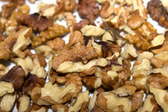 Orzechów włoskich nasiona Obraz Stock
