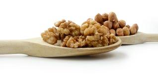 Orzech włoski & Hazelnuts na Drewnianych łyżkach Fotografia Stock