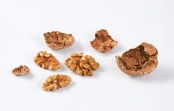 Orzech włoski skorupy i nasiona Zdjęcie Stock
