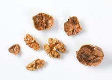 Orzech włoski skorupy i nasiona Zdjęcia Stock