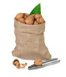 Orzech włoski w burlap torbie Zdjęcia Stock