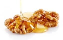 Orzech włoski z miodem Fotografia Stock