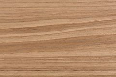 Orzecha włoskiego tła drewniana tekstura na makro- Fotografia Stock