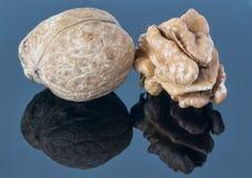 Orzecha włoskiego nasiono na ciemnym tle Z odbiciem w przedpolu obrazy stock