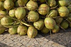 orzechy kokosowe Zdjęcia Stock